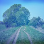 Edu-BlogTour: raccontare territori attraverso i social network