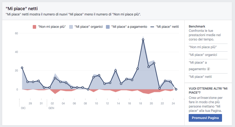 Facebook Insights - mi piace
